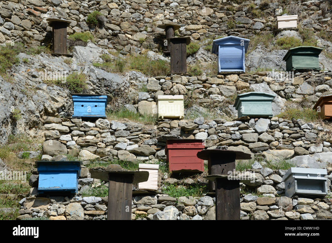 Walled Apiary with Collection of Different Bee Hives at La Brigue Roya Valley France - Stock Image
