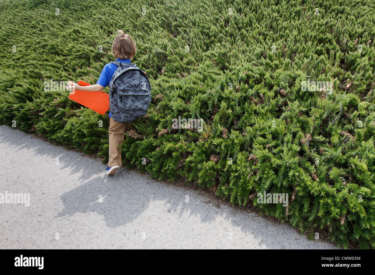Boy walking by shrubs outdoors - Stock Image