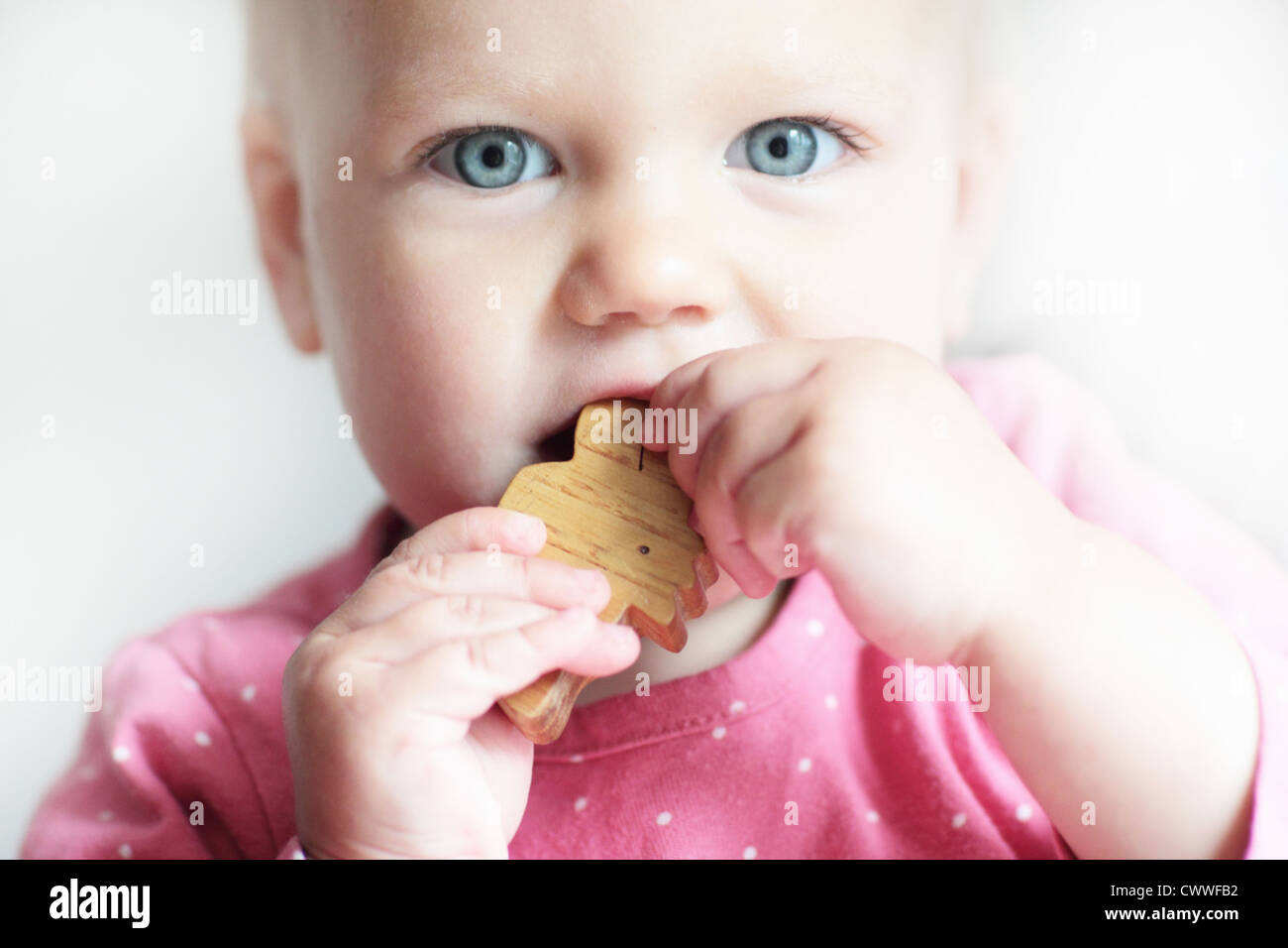 Toddler chewing on toy block - Stock Image