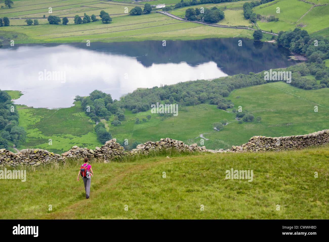 A hiker descending High Hartsop Dodd with Brothers Water in the distance. Lake District. - Stock Image