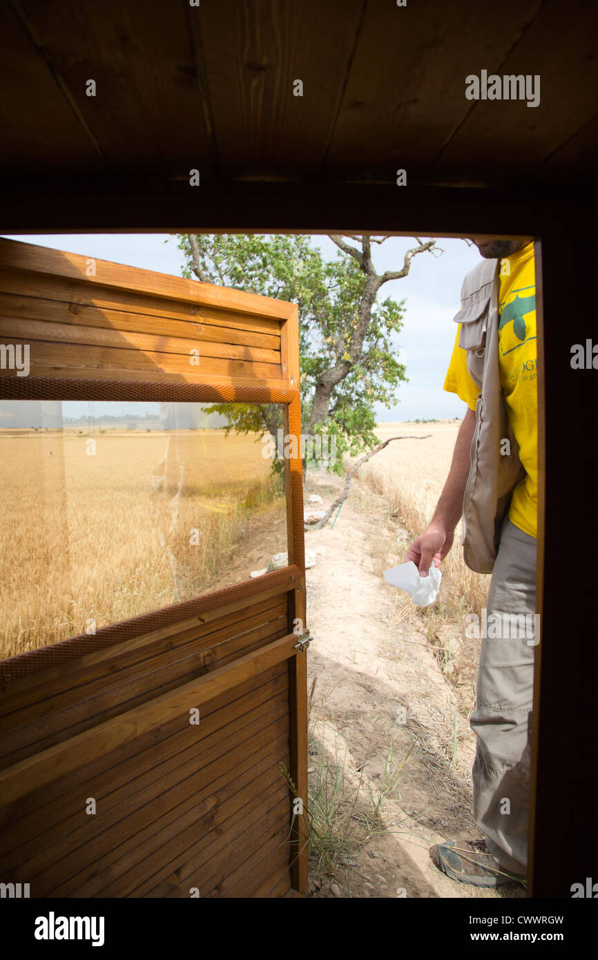 Bird Hide; Photo Logistics; being set up for use; Spain; summer - Stock Image