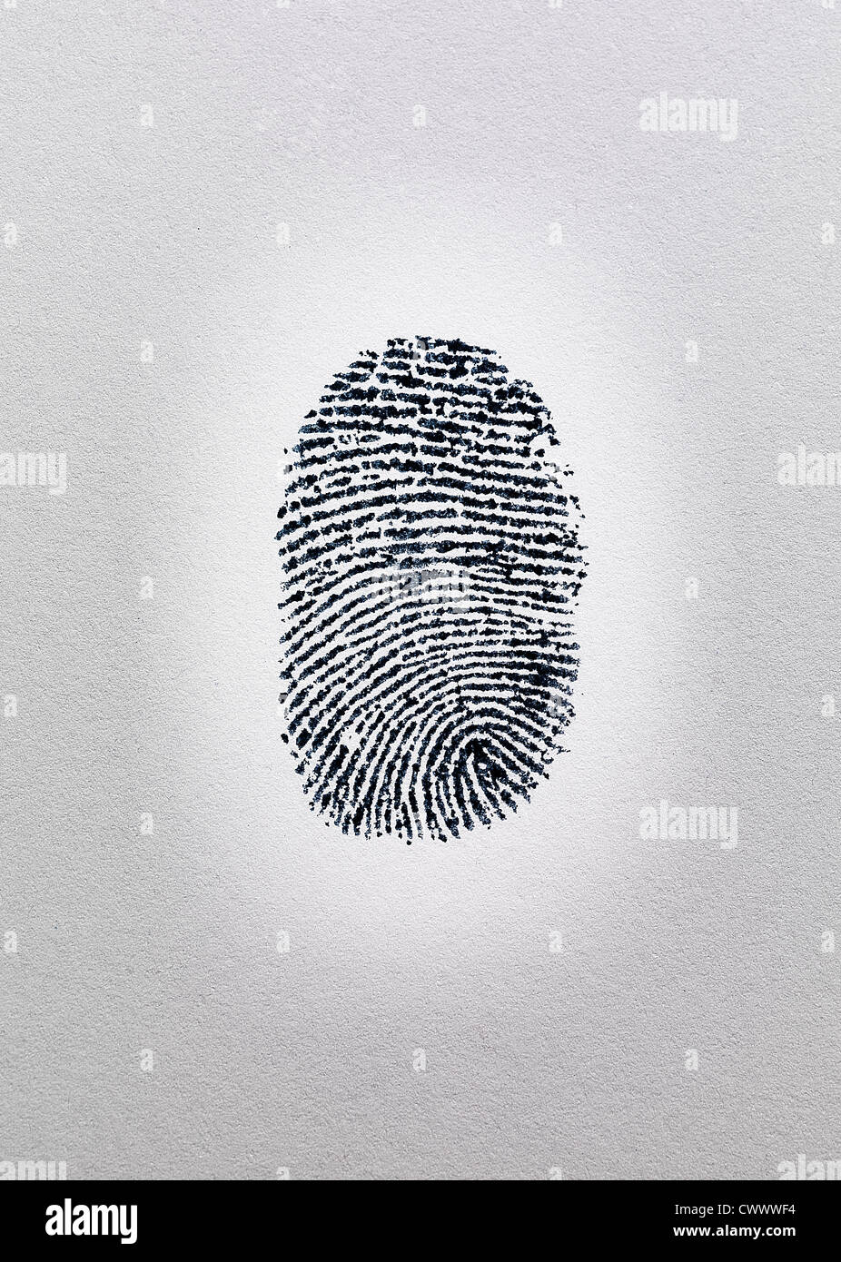 Close up of fingerprint on paper - Stock Image