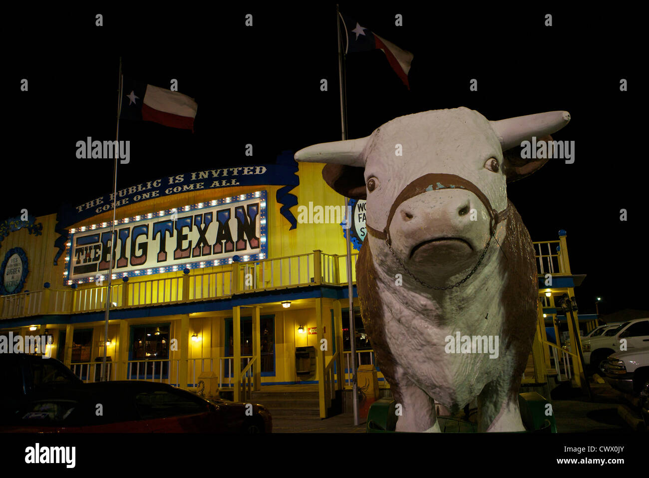 Cow statue in front of the Big Texan restaurant along Route 66 at night - Stock Image