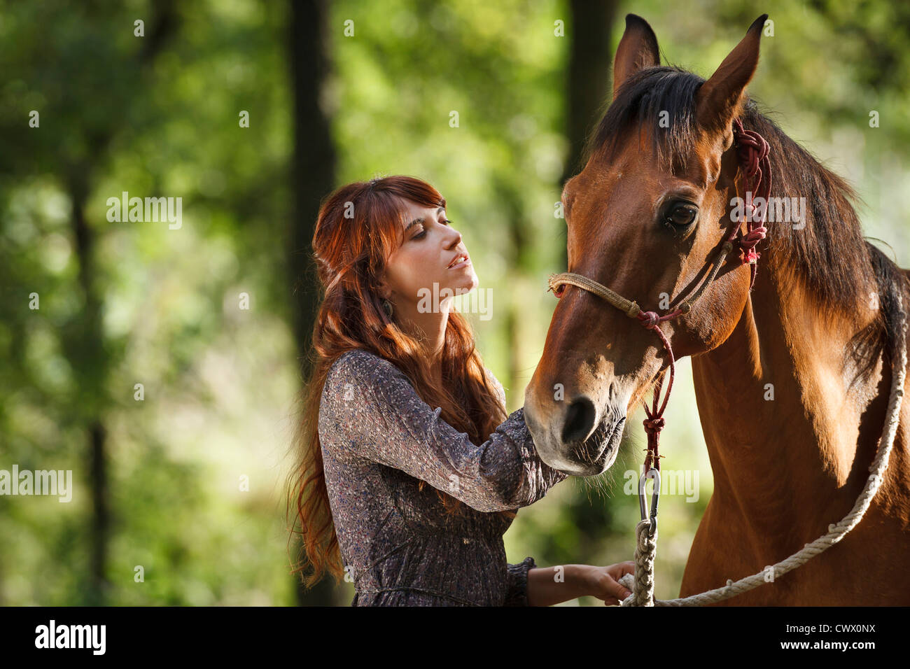Woman walking horse in forest Stock Photo