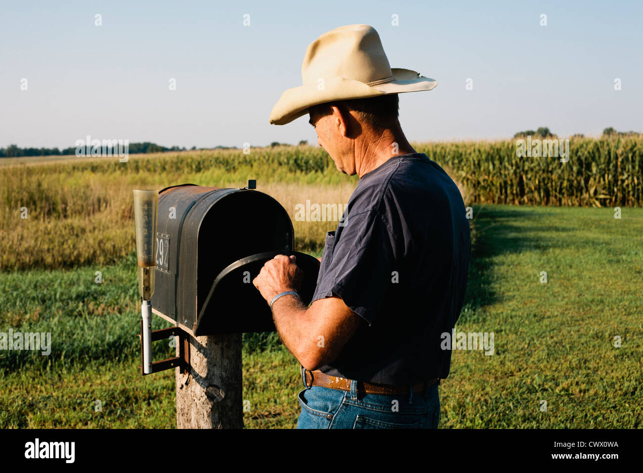 Farmer checking mail box in rural field - Stock Image