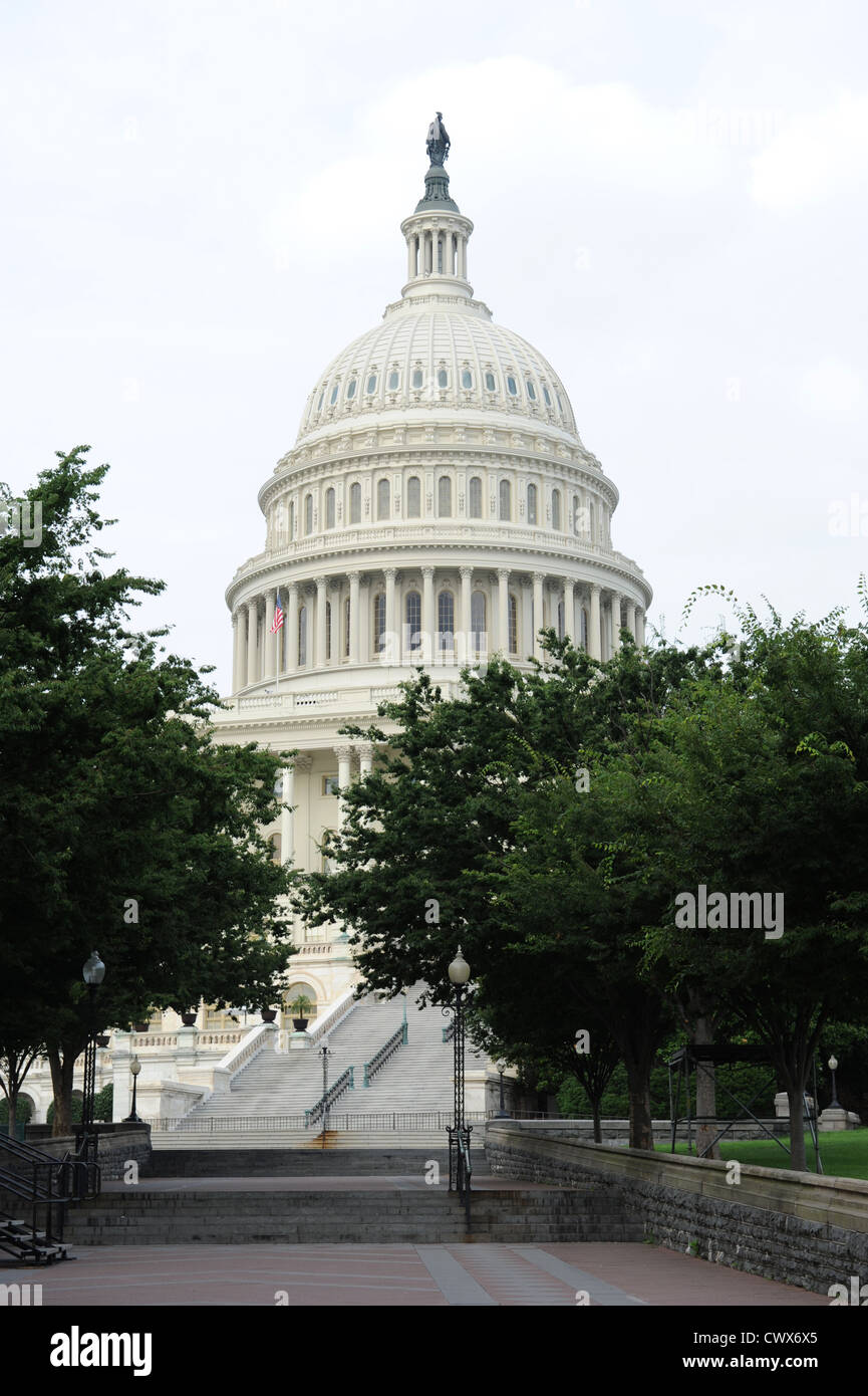United States Capital Dome with trees on the foreground Stock Photo