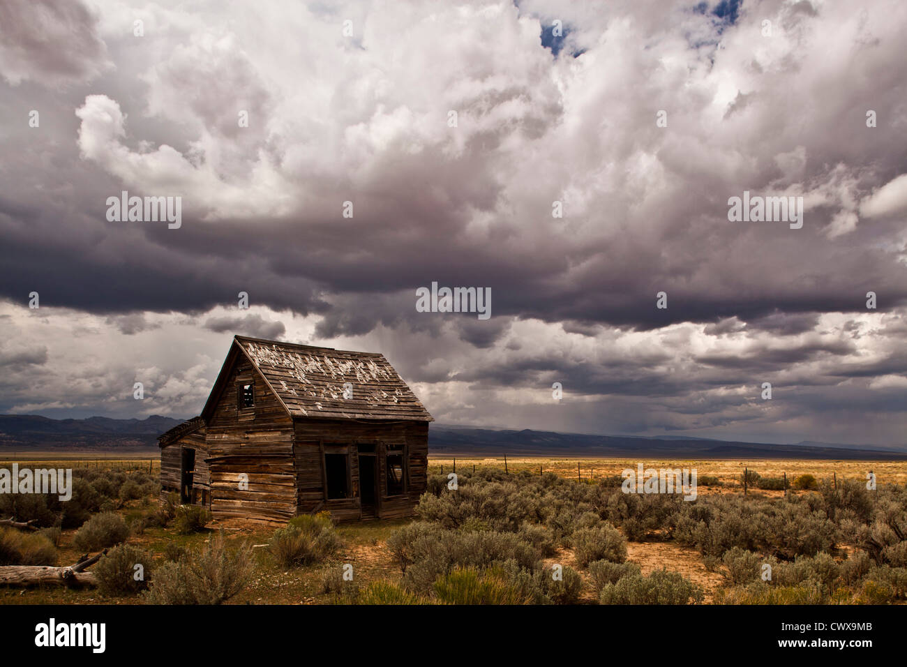 Widtsoe Ghost Town, Utah, United States of America - Stock Image