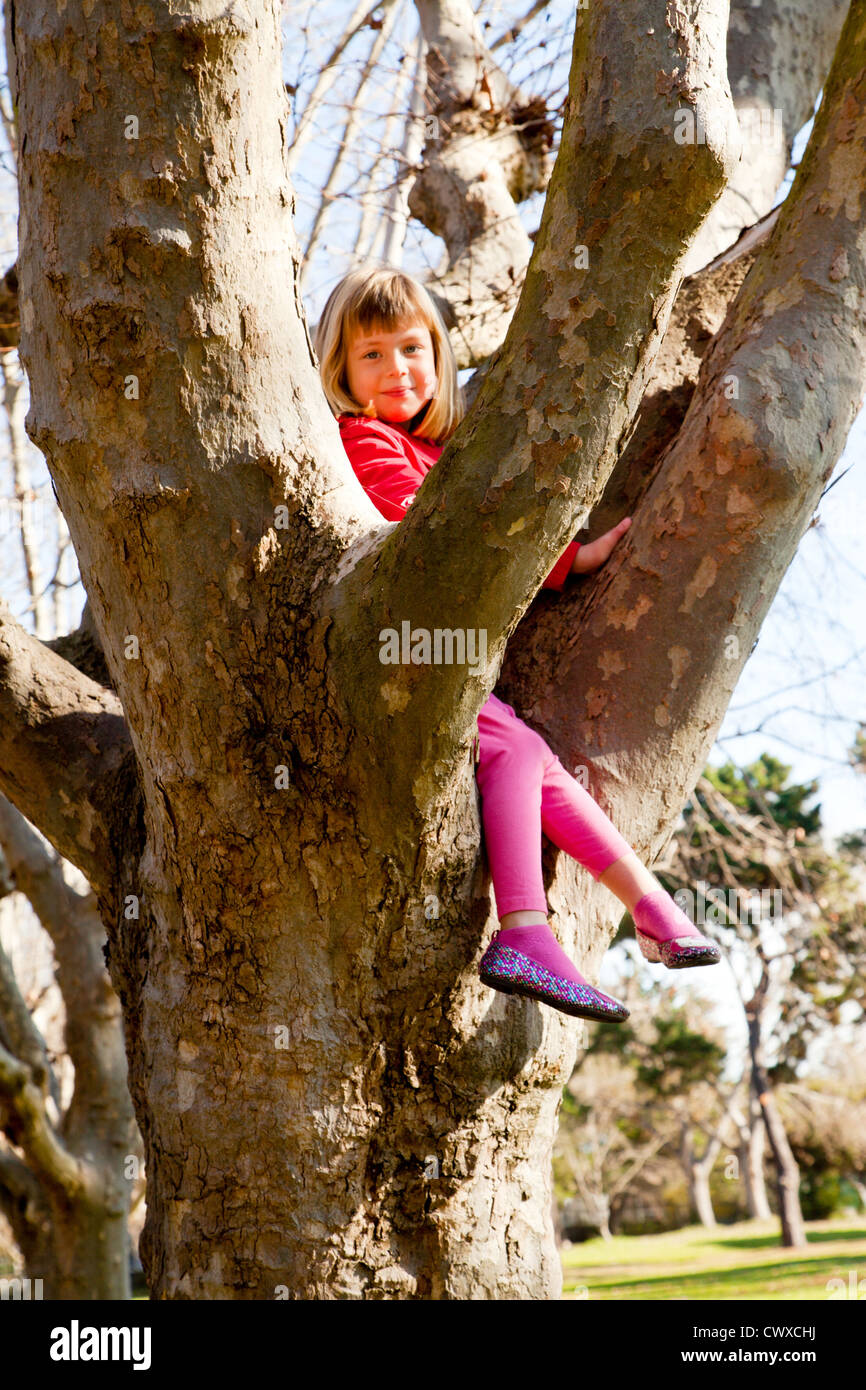 A little girl sitting in a tree. - Stock Image