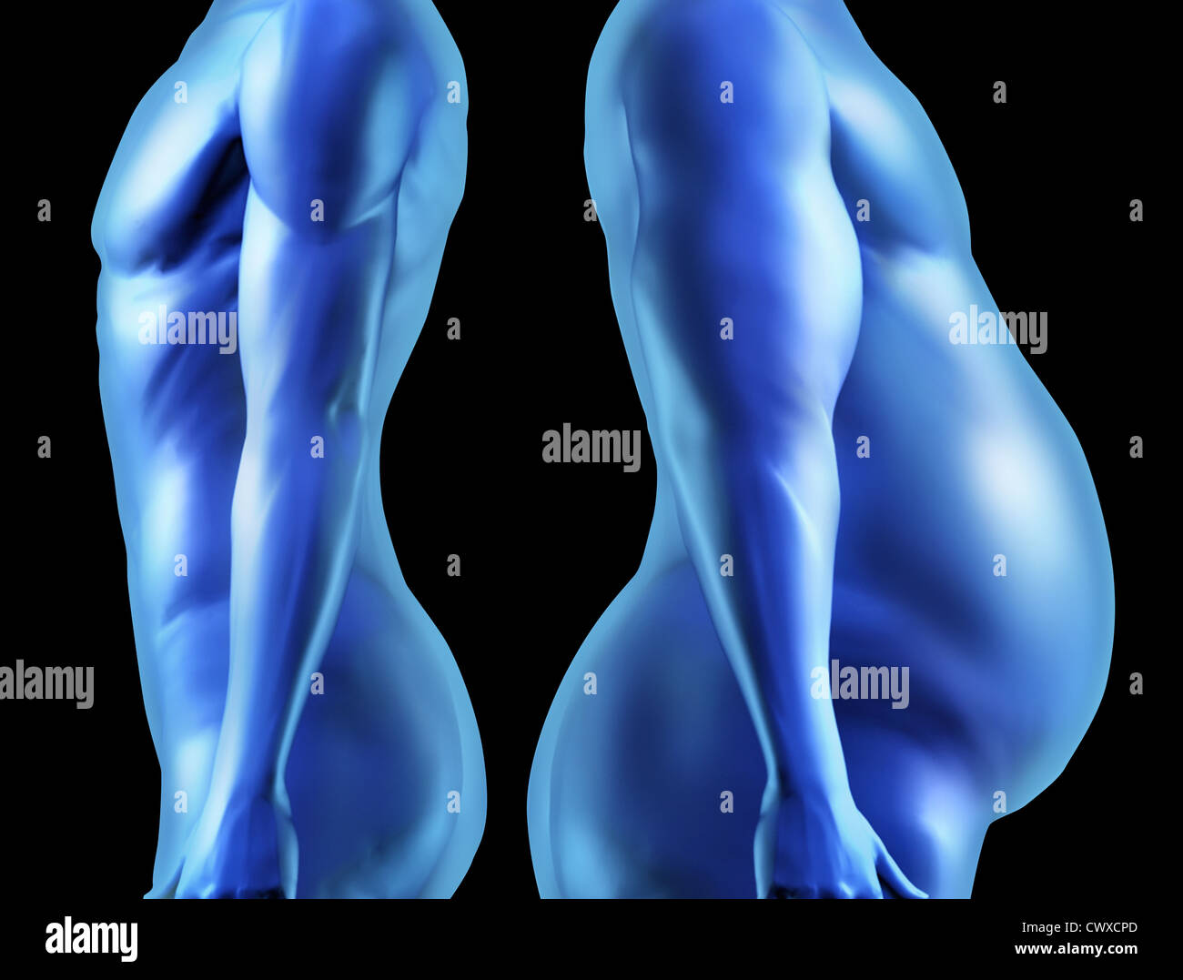 Human Body Shape Comparison With Dieting Weightloss For A Healthy Fit Stock Photo Alamy