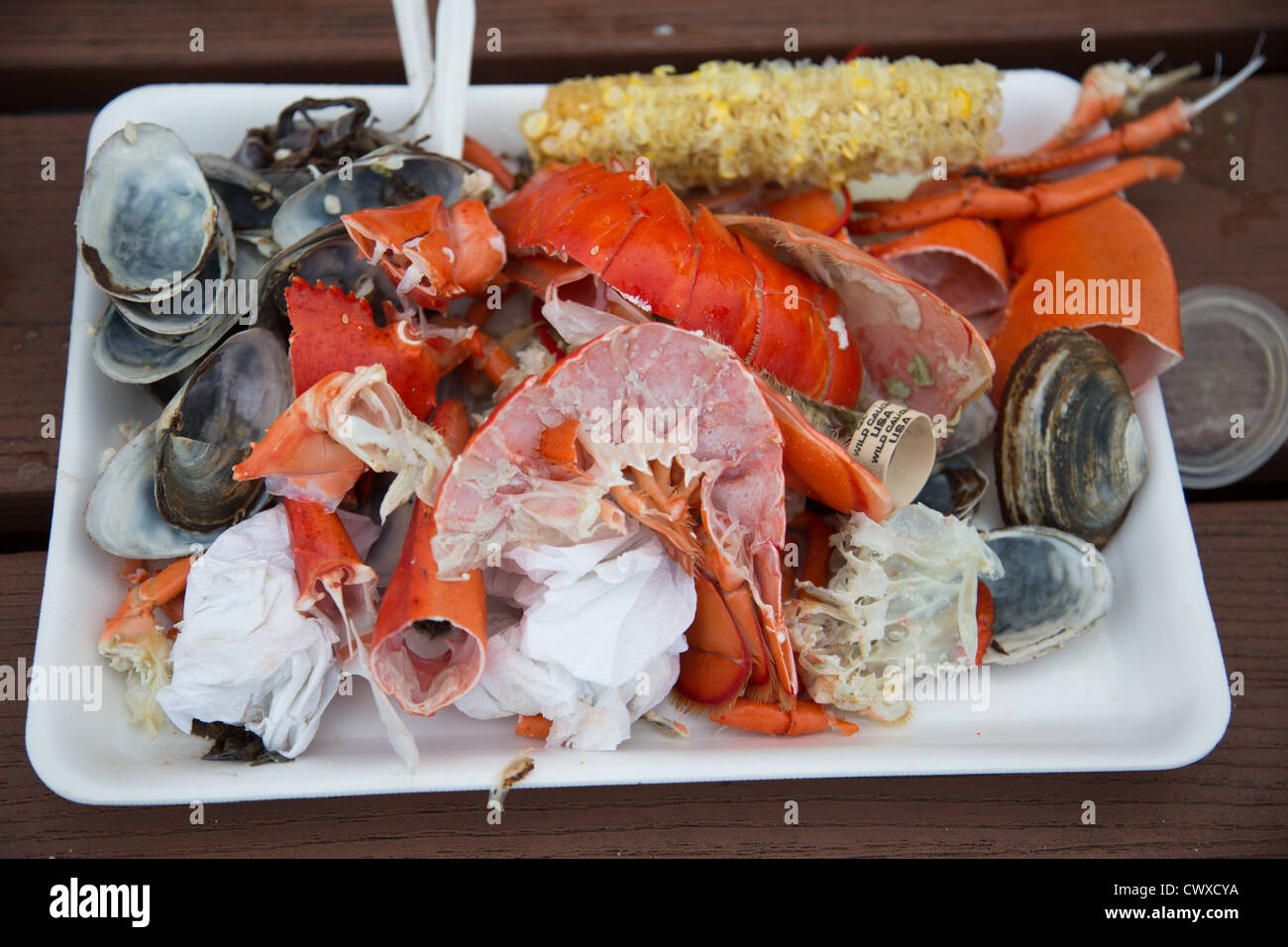 A stack of discarded lobster shell pieces and clam shells at Young's Lobster Pound in Maine - Stock Image