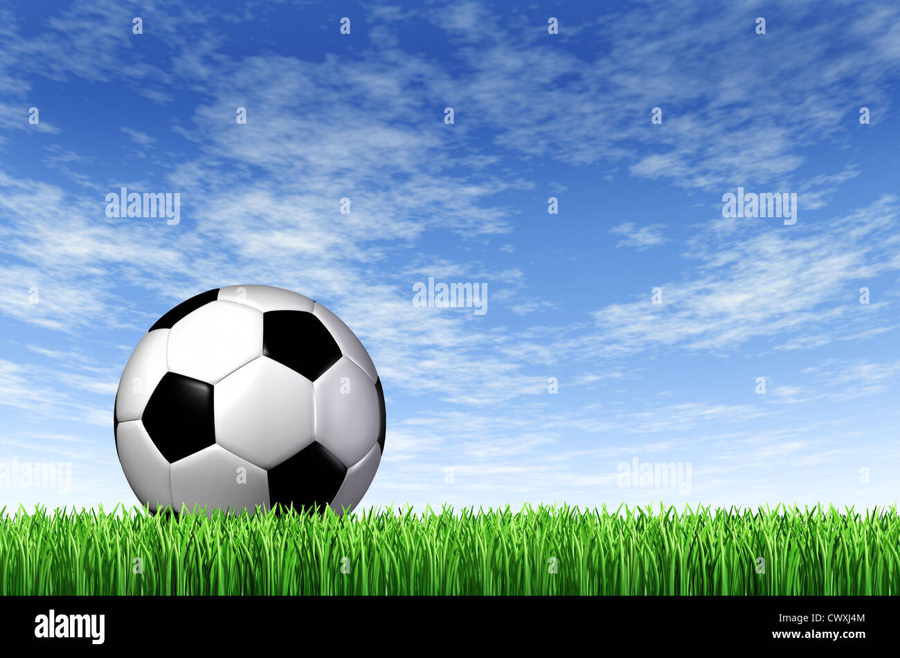 bfbfe6e77 Soccer Ball and grass field background with a blue sky and green european  football stadium turf as a concept of fun summer team