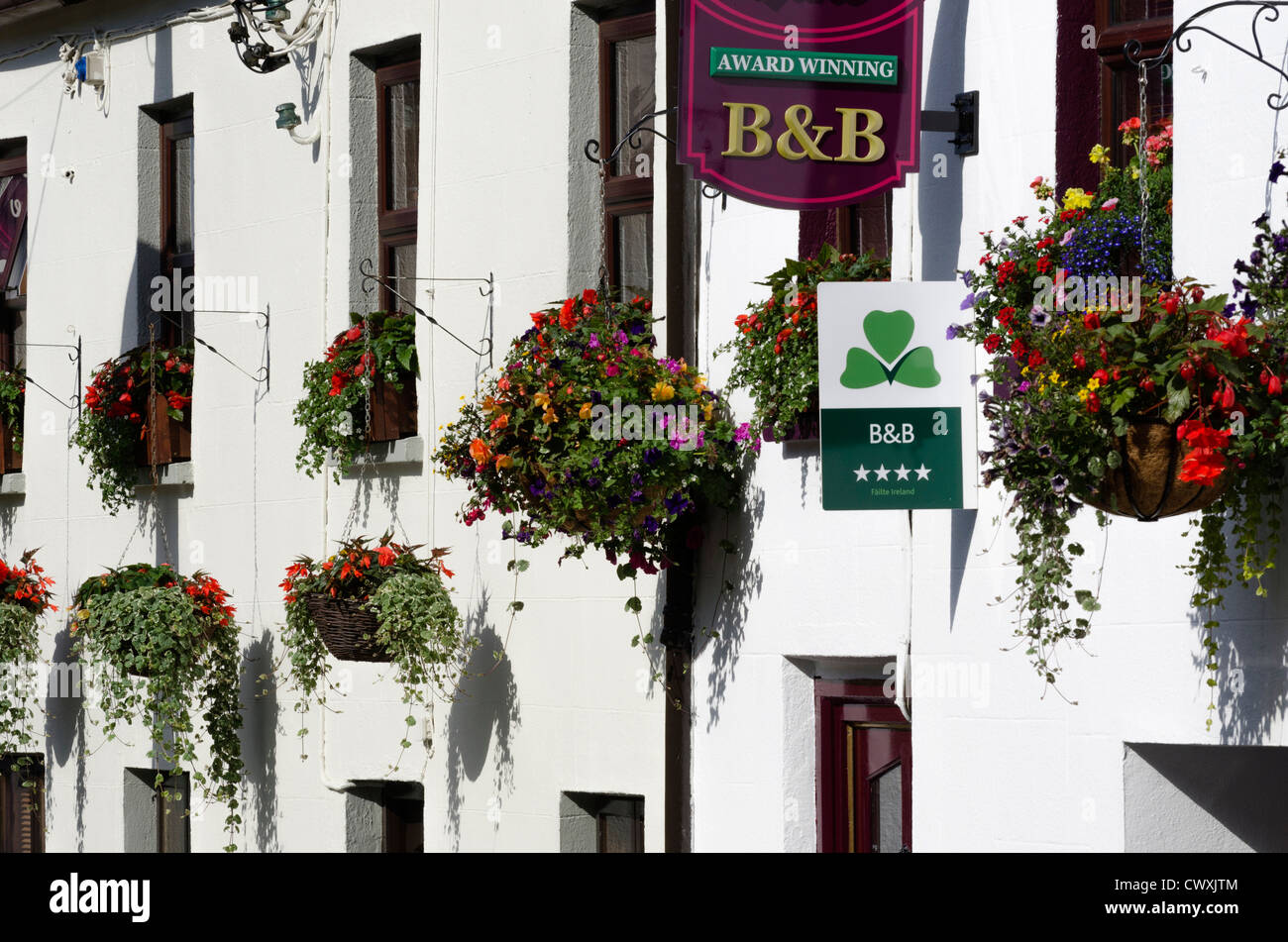 Hanging baskets outside a B&B in the Republic of Ireland - Stock Image