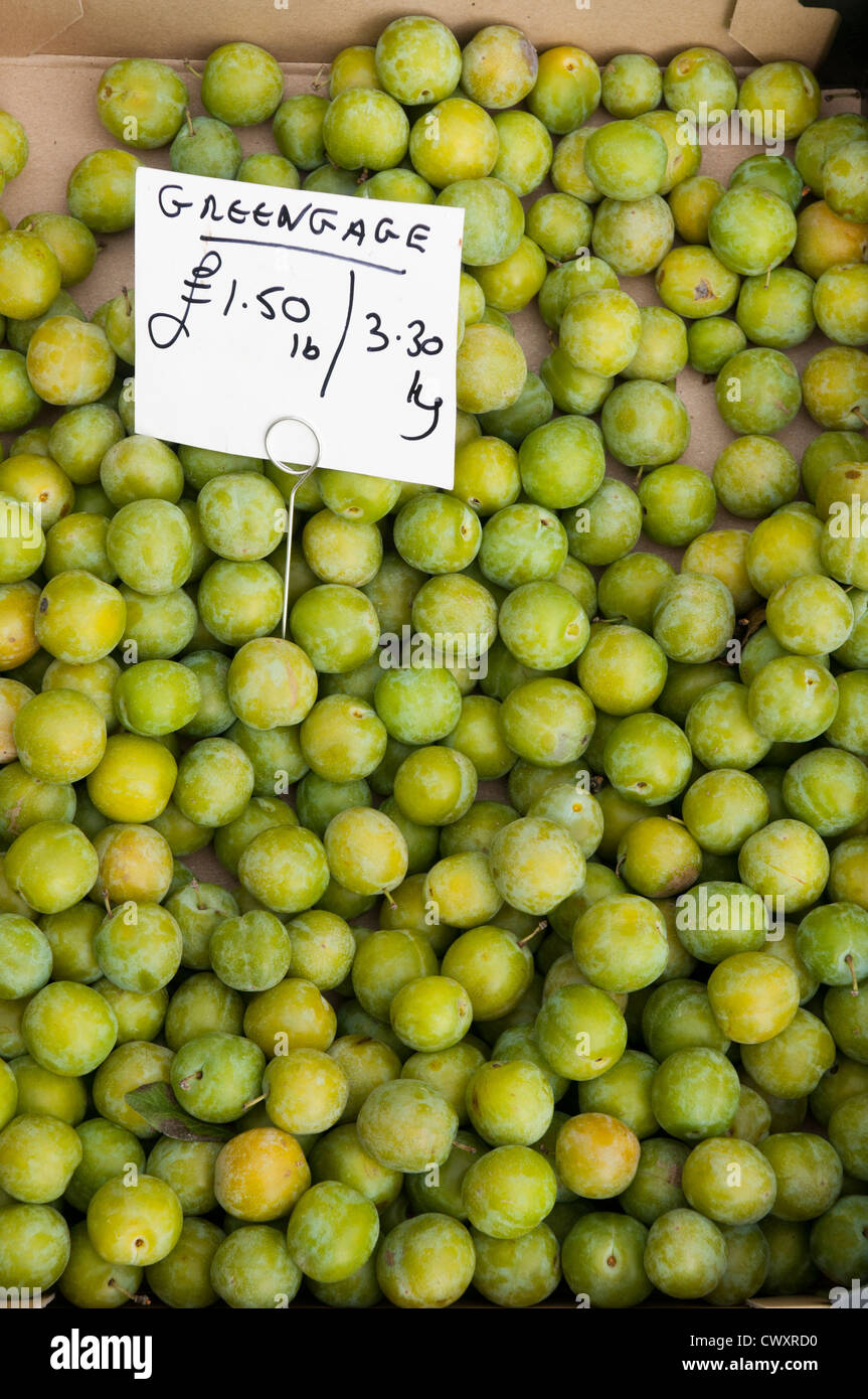 Greengages on sale during the Ludlow 2012 Food Festival - Stock Image
