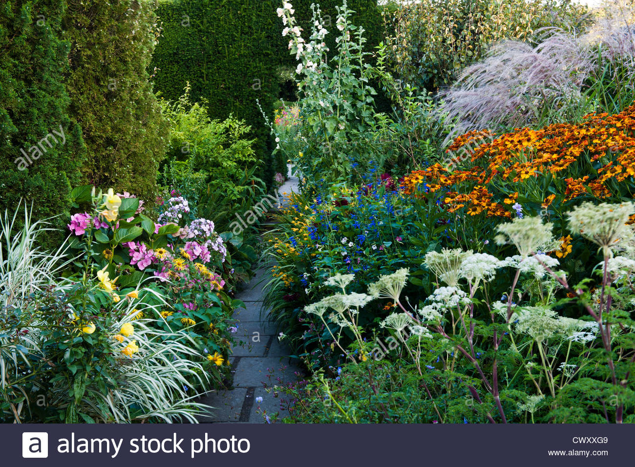 Summer flower plant combination helenium stock photos summer great dixter garden late summer flower borders perennials september path stone hedge yew arch east suusex mightylinksfo