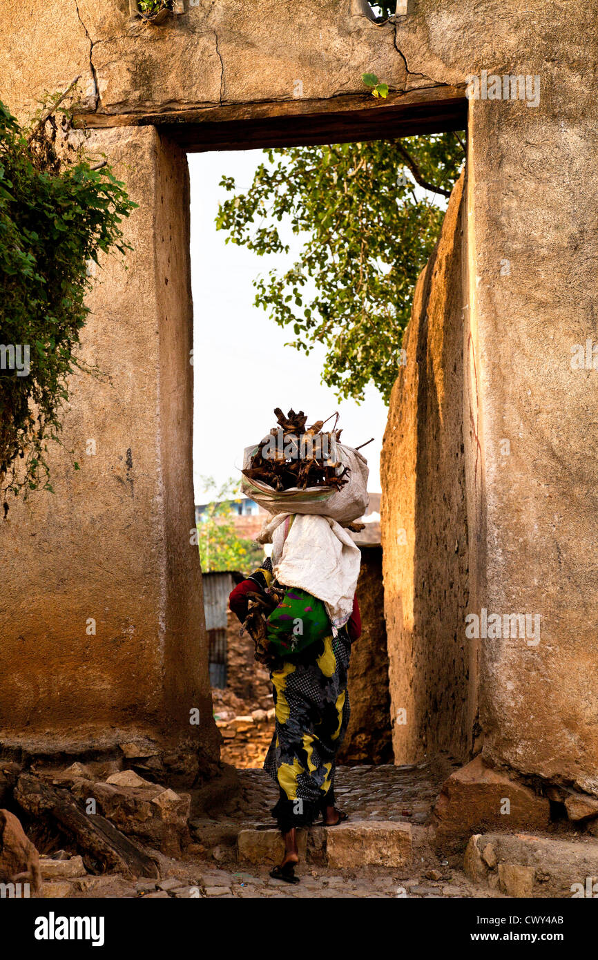 Woman carrying firewood on her head Harar Ethiopia. - Stock Image