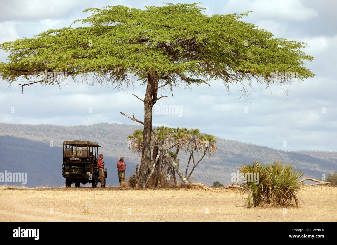 Tourists on a jeep safari stop for breakfast under an acacia tree, the Selous game Reserve Tanzania Africa - Stock Image