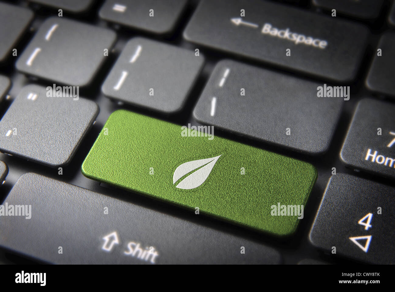 Green Energy Key With Leaf Icon On Laptop Keyboard Included
