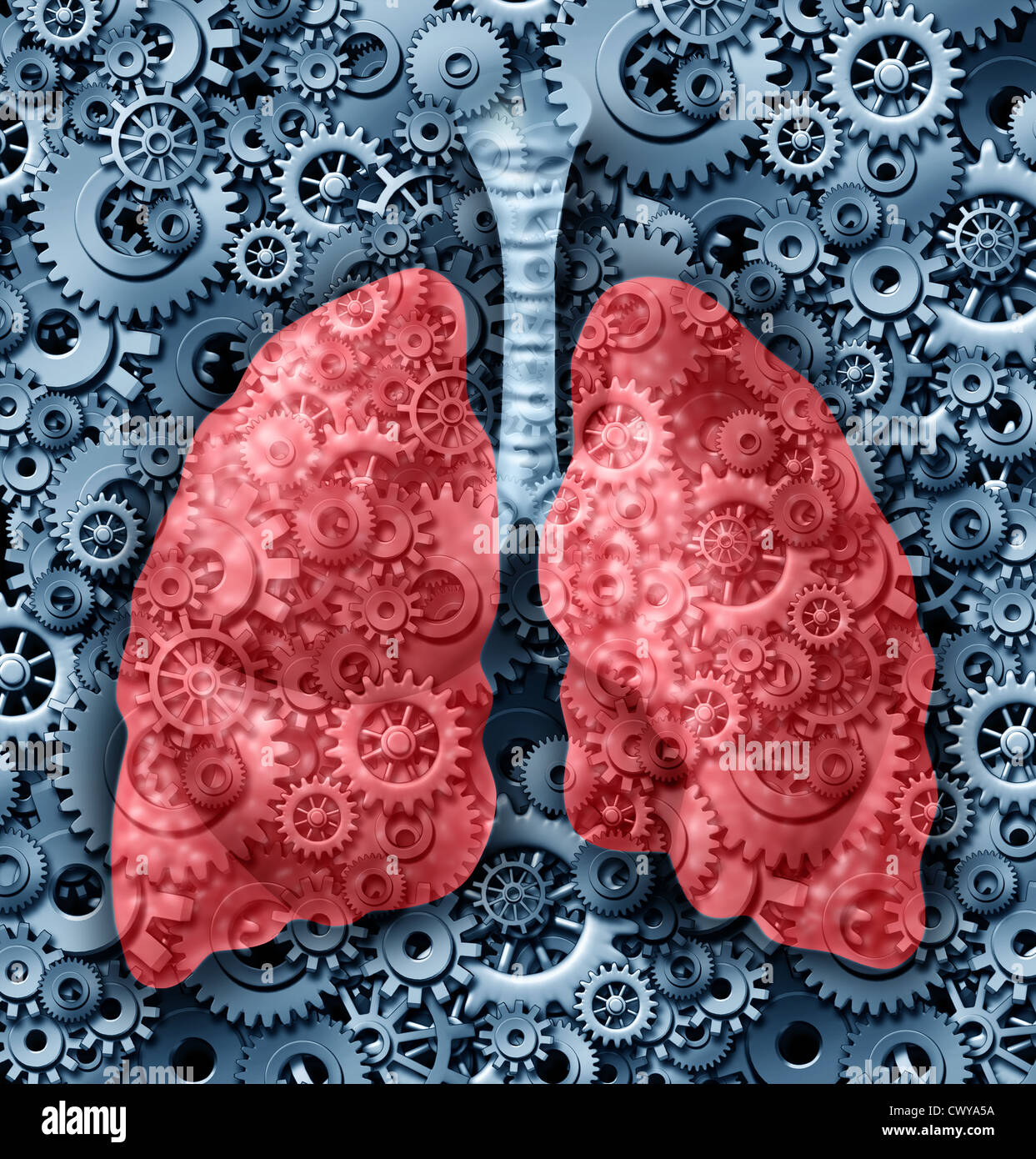 Human lungs health medical care symbol with gears and cogs connected together breathing oxygen representing the - Stock Image