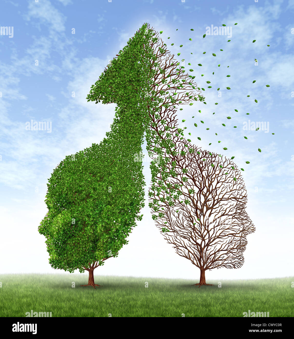 Partnership problems with two trees in the shape of human heads merged together into an up arrow and one of the - Stock Image