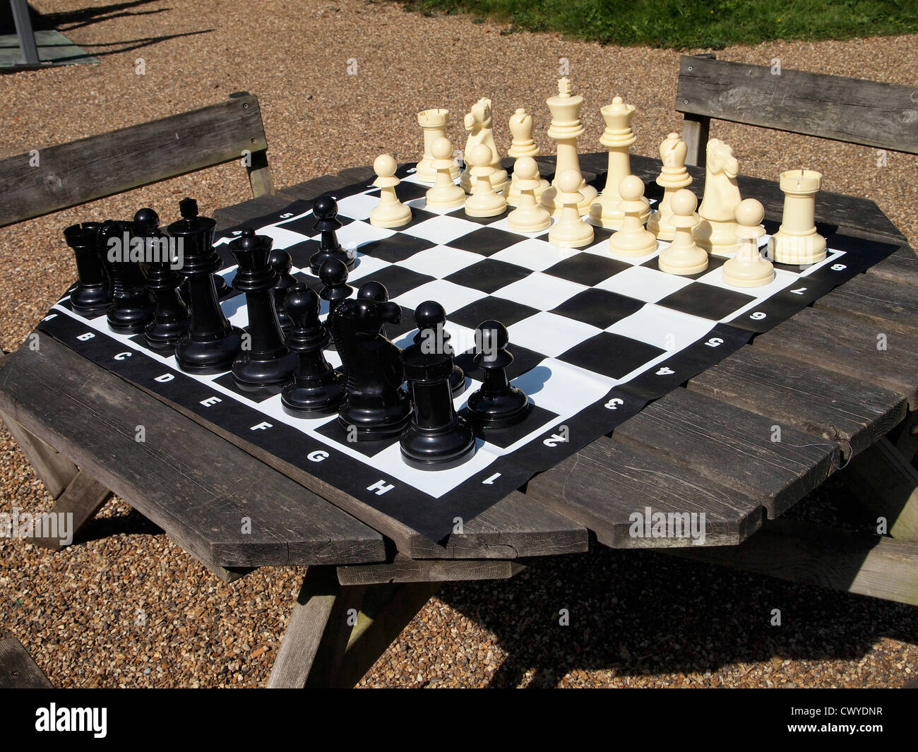 Large Outdoor Chess Set And Board On A Picnic Table.