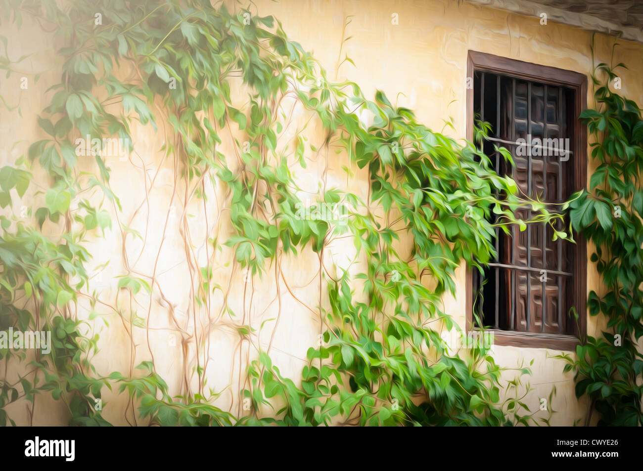 Yellow old wall with green plants as decoration. Brown open window ...