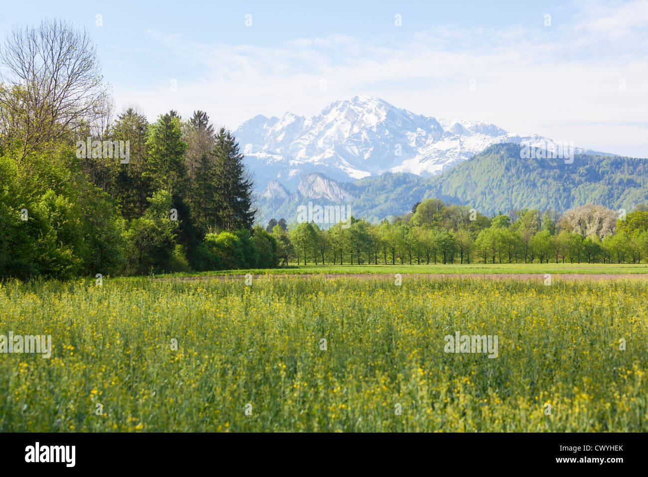 Meadows at Anif Castle in front of the Hoher Goell, Salzburg State, Austria Stock Photo