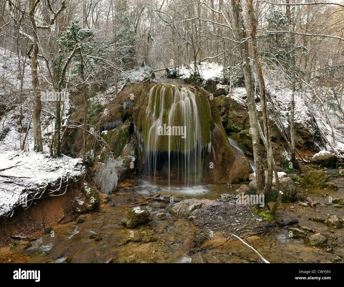 Falls in the winter forest Stock Photo