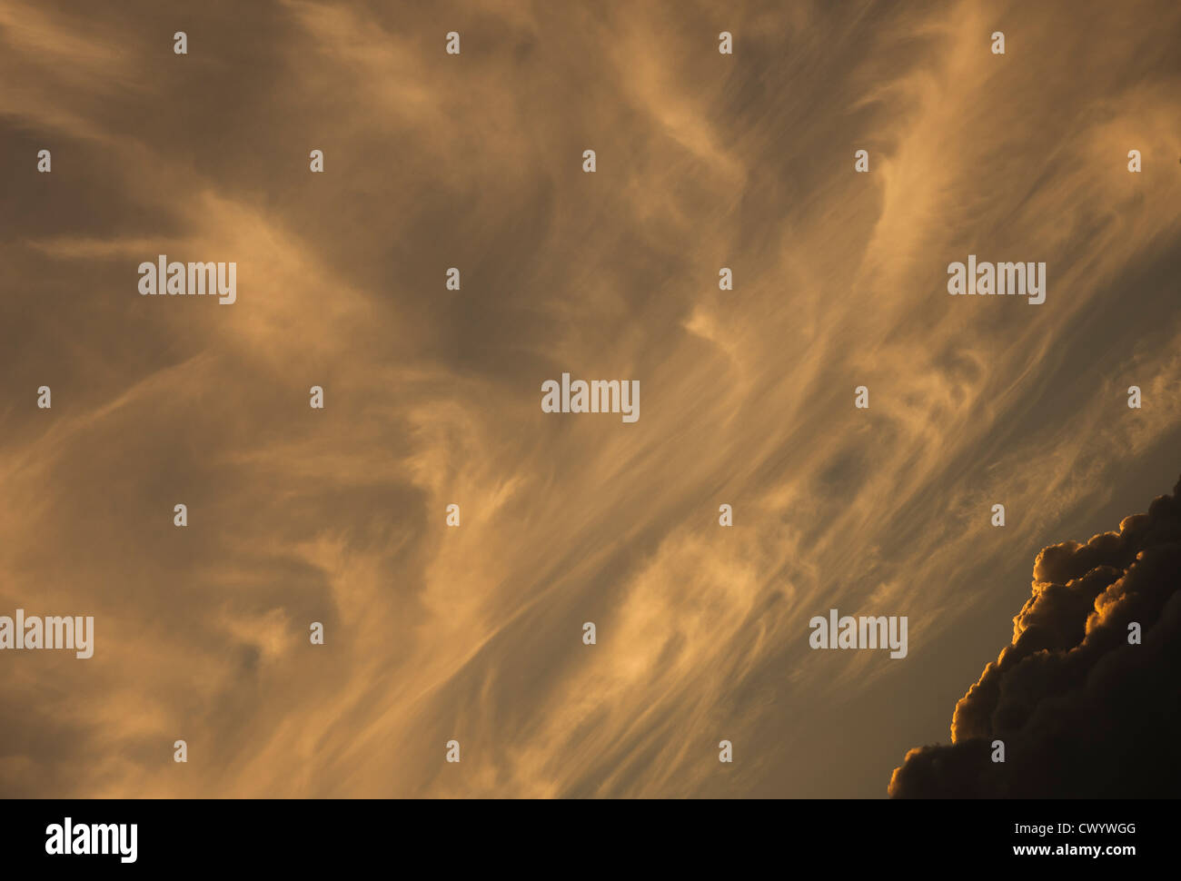toward sunset, nuances,light,texture, Stock Photo