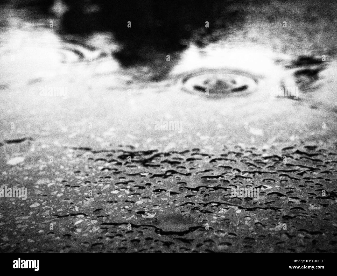Black and white of pavement, puddle and raindrops - Stock Image