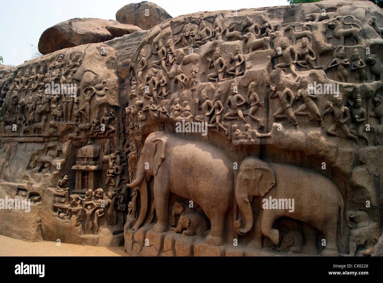 Arjuna Penance Stone Carvings in Mahabalipuram Tamil Nadu India, world largest stone bas relief and UNESCO world - Stock Image