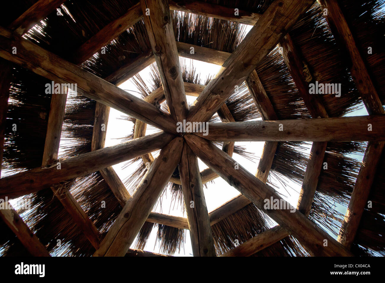 Thatch roof at the Kansas City Zoo - Stock Image