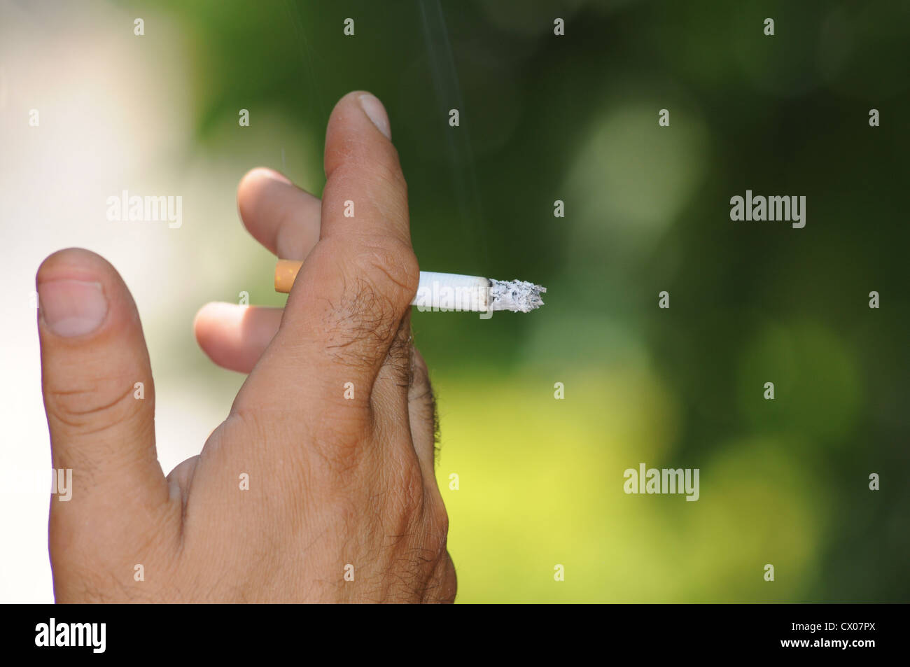 Cigar in the hand of a smoker. - Stock Image