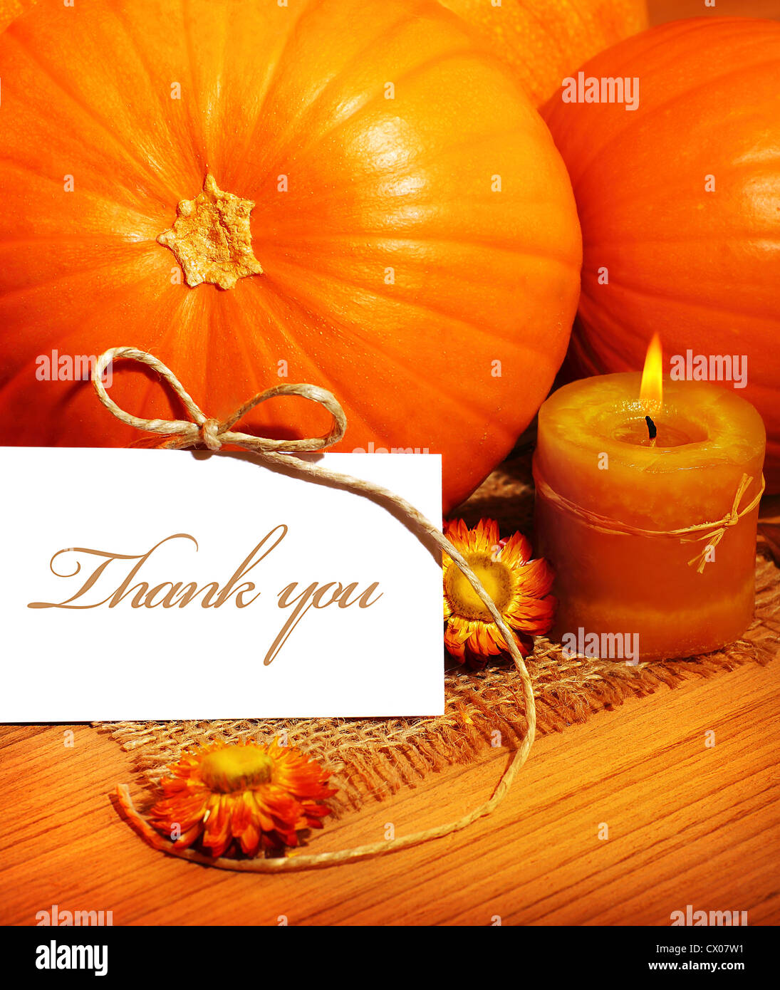 Thank You Thanksgiving Greeting Card With Pumpkin