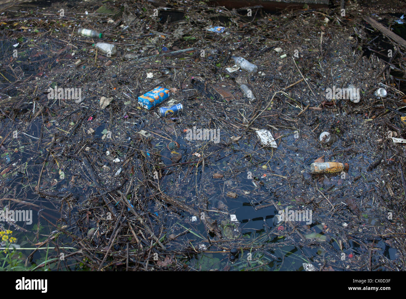 water pollution,river Thames,near Richmond - Stock Image