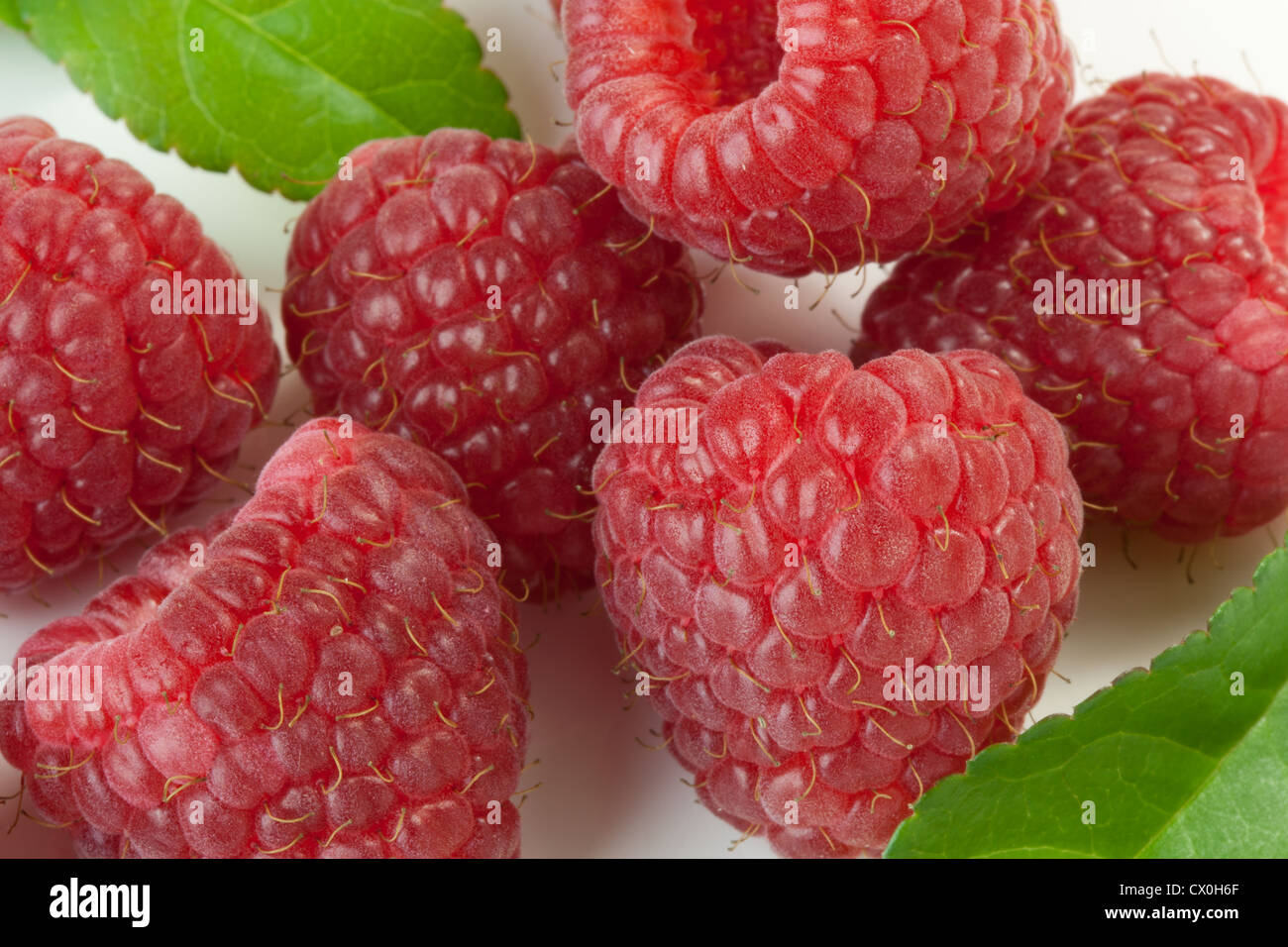 Close up of rasberries with leaves on a white tile - Stock Image