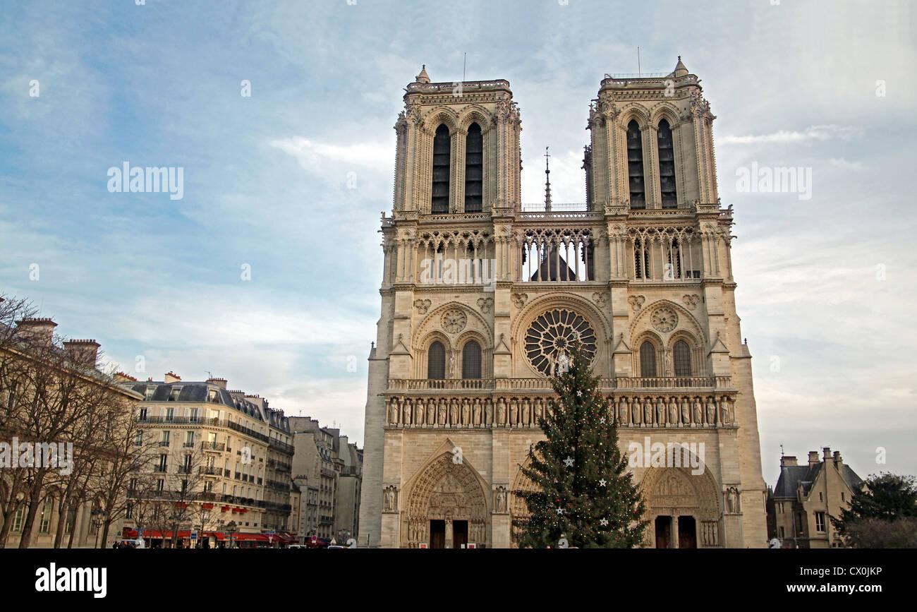 Notre-Dame-de-Paris, Paris, with Christmas tree in front Stock Photo ...