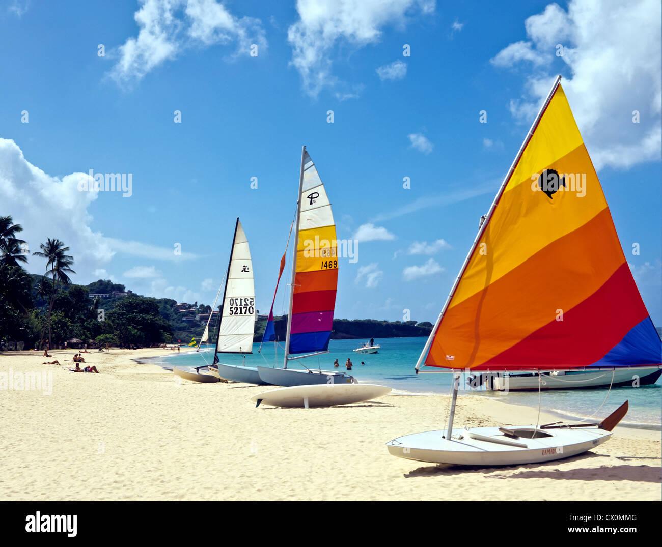8202. Grand Anse, Grenada, Caribbean, West Indies Stock Photo