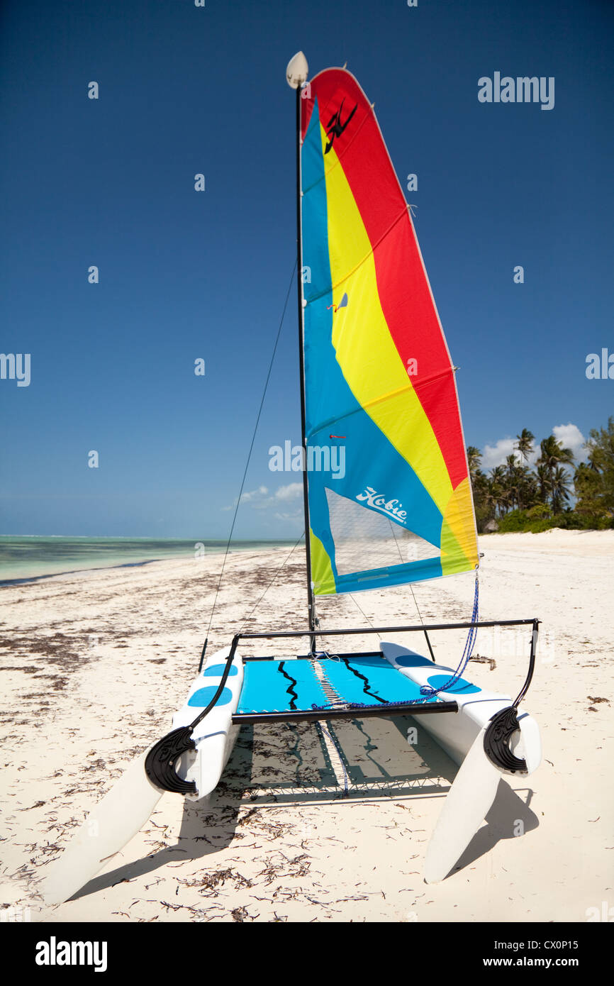 A Hobie Cat catamaran on a tropical beach, Bwejuu, zanzibar africa - Stock Image