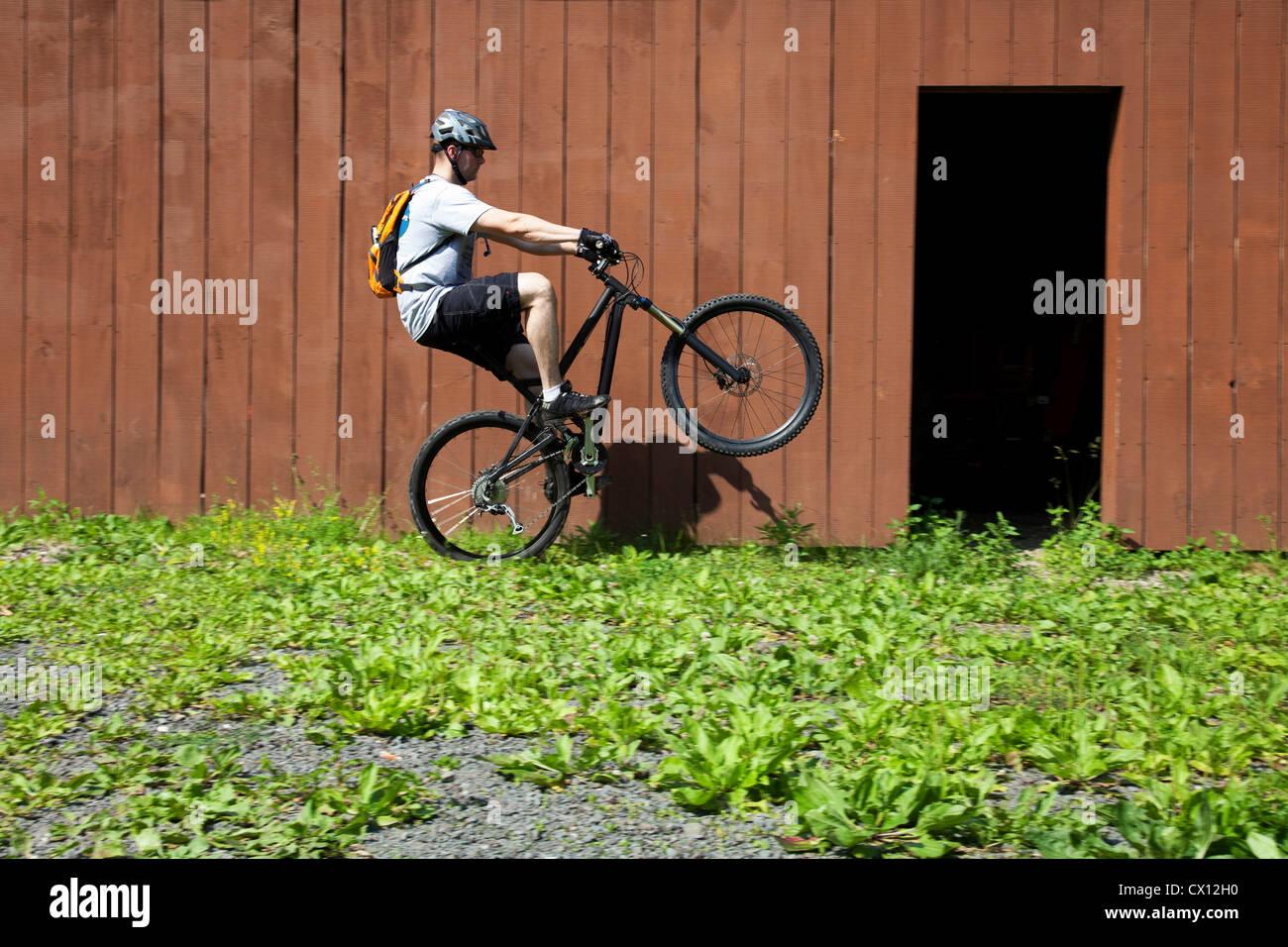 Mountain biker riding on one wheel outside barn Stock Photo