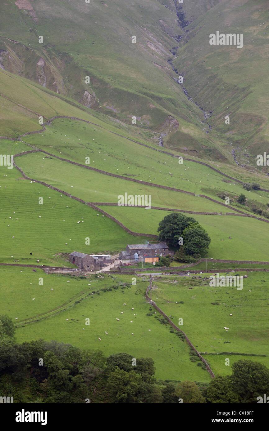 Farm backing onto The Yorkshire Dales National Park, UK. - Stock Image