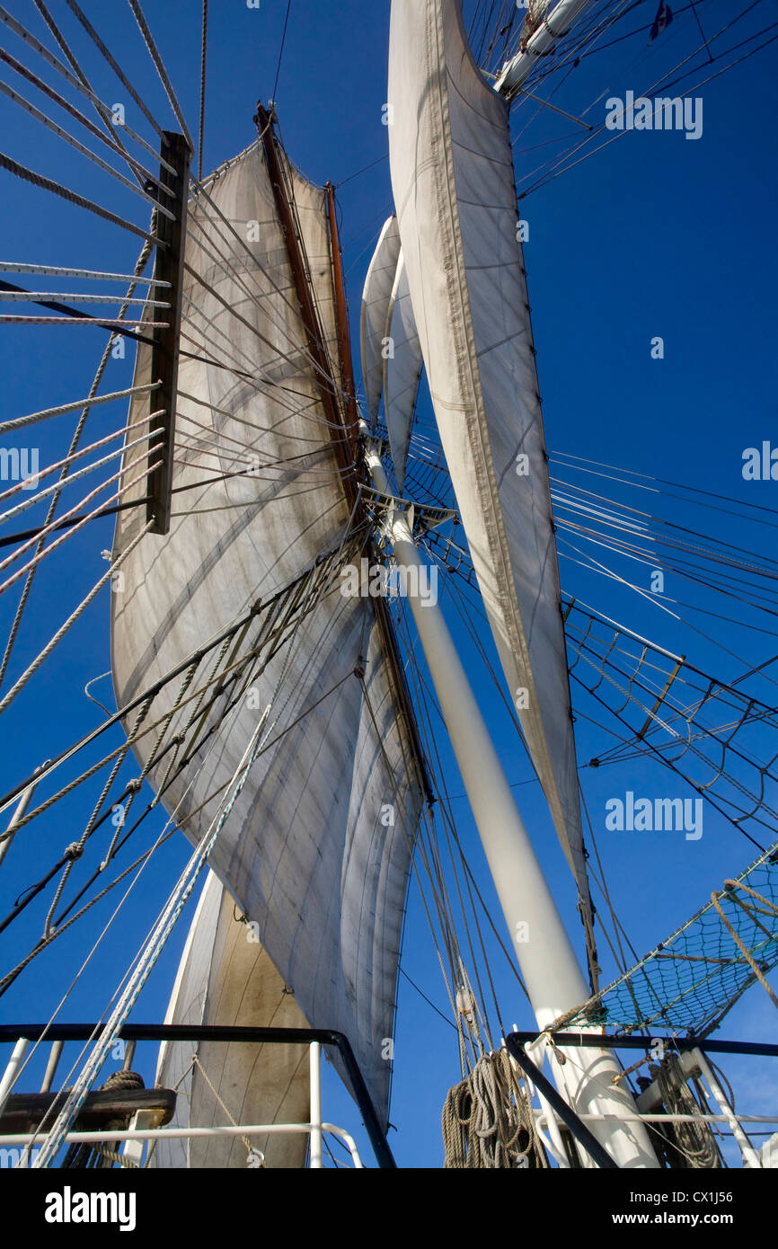 Sails and rigging on board of the tall ship / barquentine Antigua sailing with tourists towards Svalbard, Spitsbergen, - Stock Image