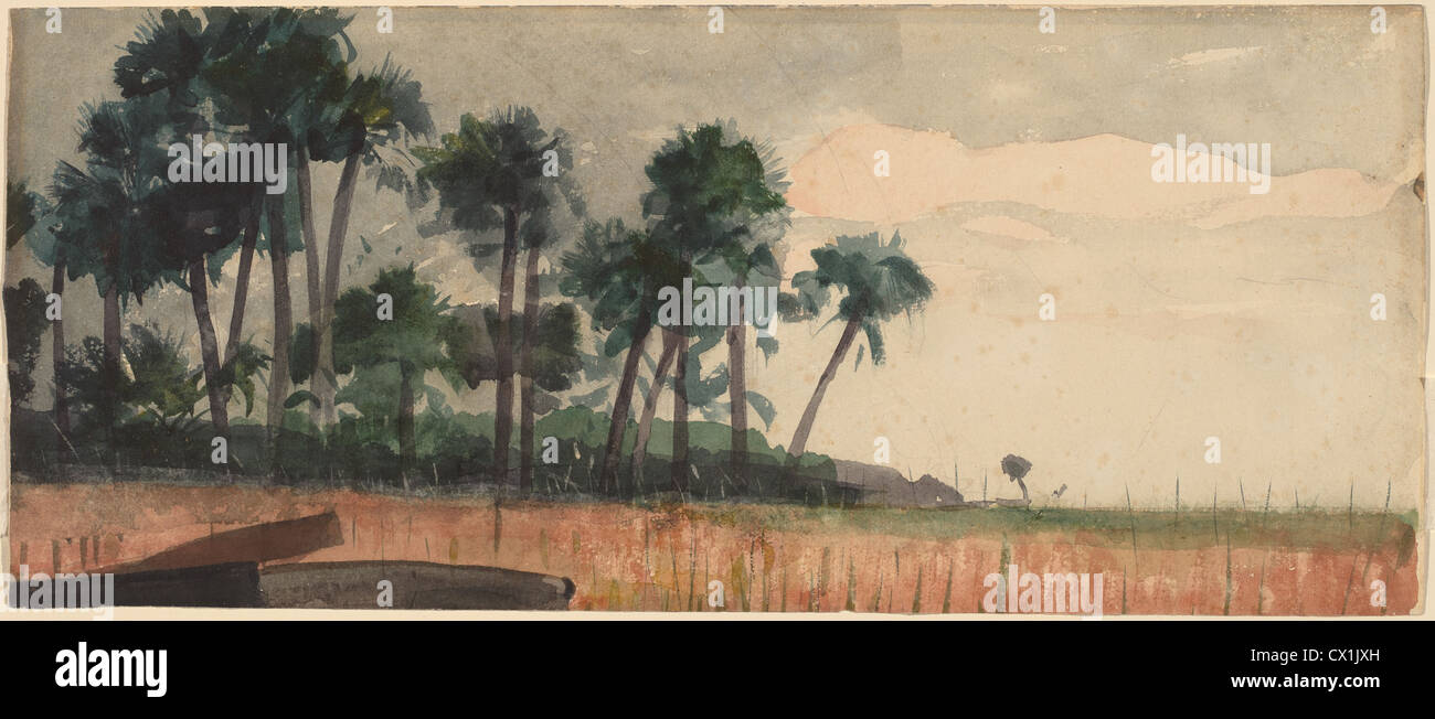 Winslow Homer, Palm Trees, Red, American, 1836 - 1910, 1890, watercolor over graphite - Stock Image