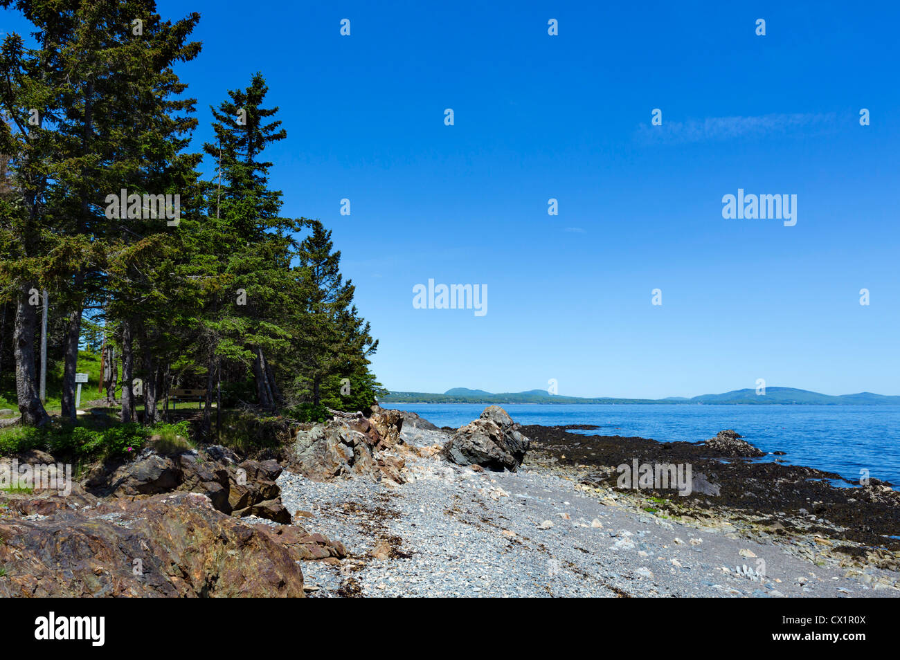 Beach in Owl's Head Light State Park on St George Peninsula, Knox County, Maine, USA - Stock Image