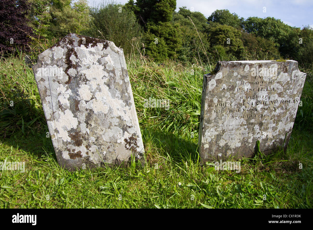 Old tombstones with mottled patterns formed by lichens - Stock Image