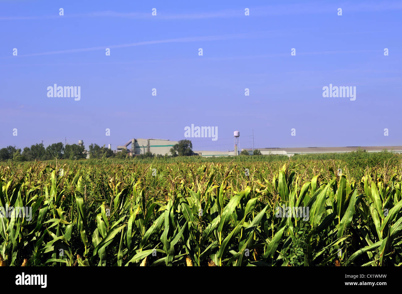 STEEL DYNAMICS SDI in Whitley county Indiana - Stock Image