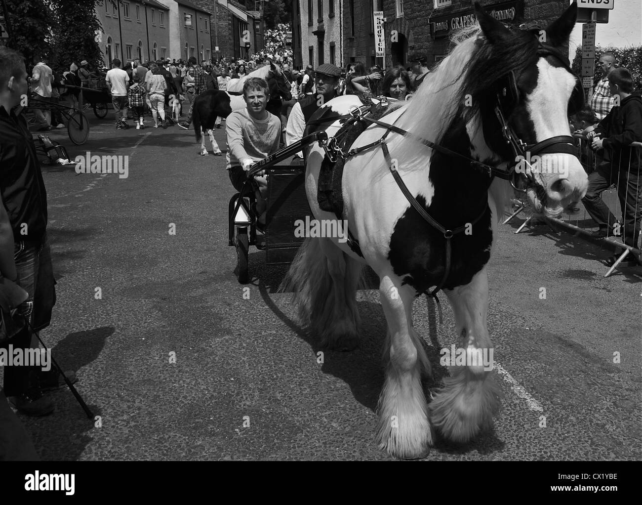the annual gypsy horse fair in Appleby, westmorland, northwest england - Stock Image