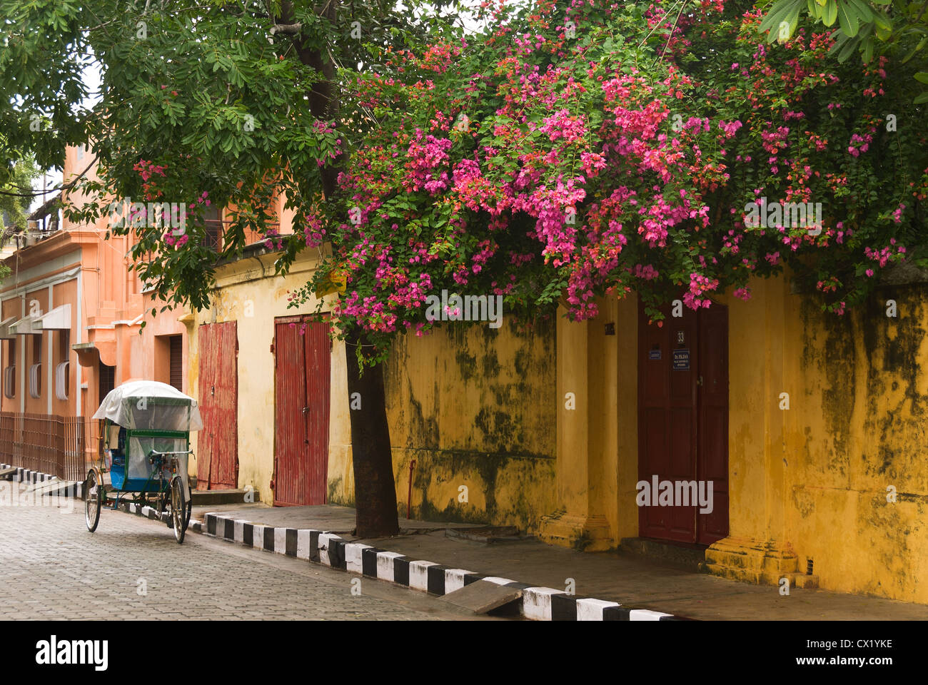 Elk201-4472 India, Tamil Nadu, Pondicherry, French Quarter, street scene with cycle rickshaw - Stock Image