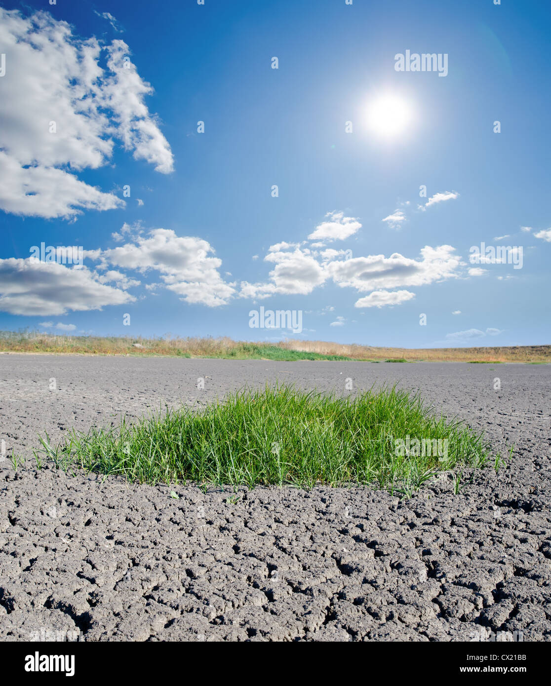 sun over drought land - Stock Image