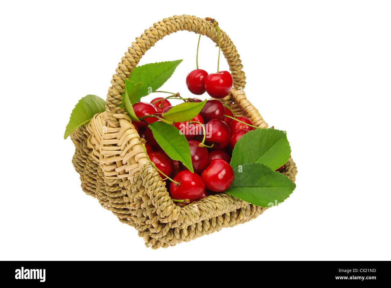 Kirschen im Korb - cherries in basket 01 - Stock Image