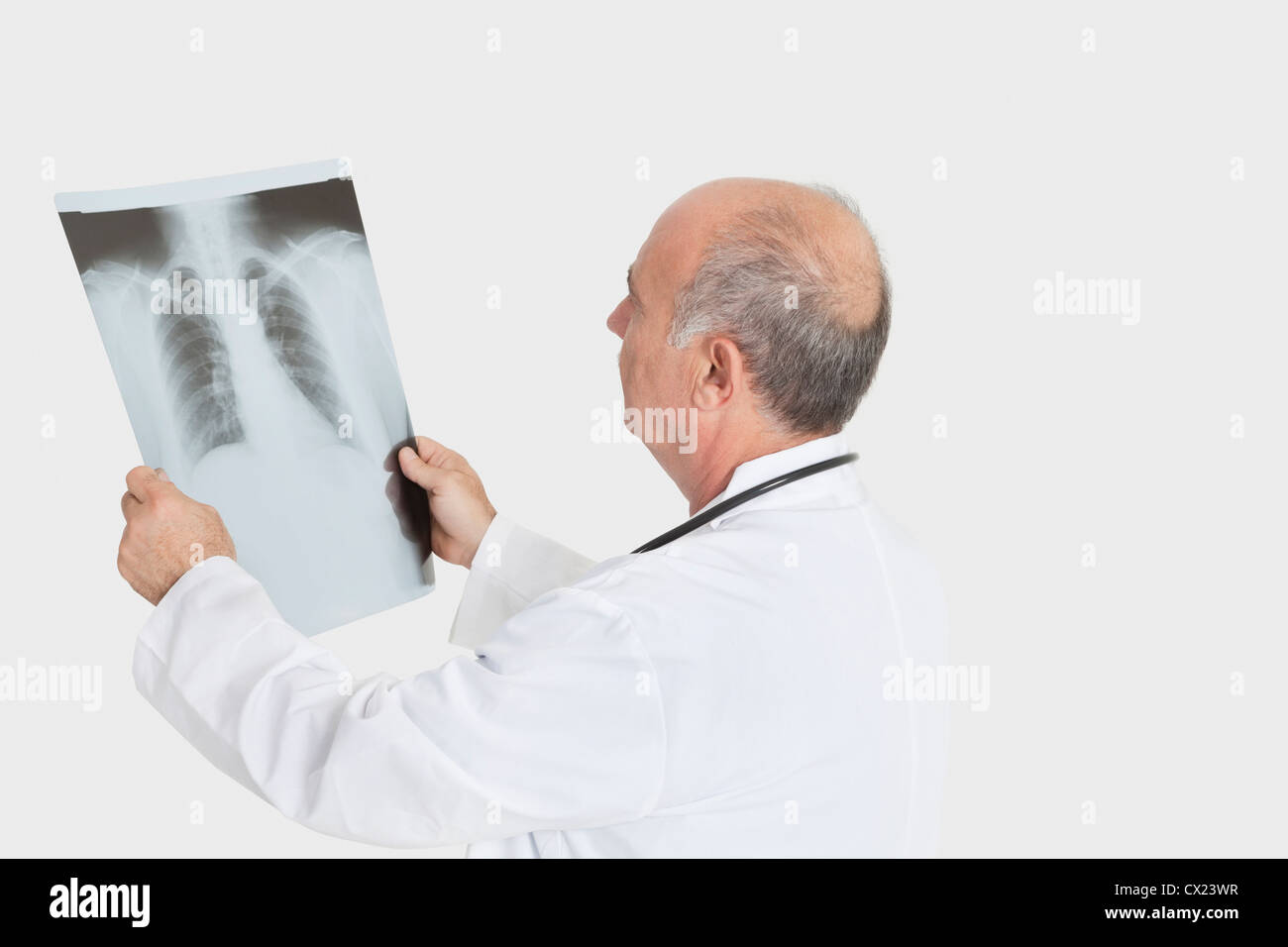 Senior male doctor examining medical radiograph over gray background - Stock Image